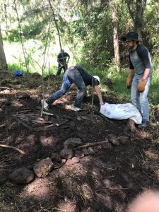 Primera delimitación dos metros del árbol madre con troncos y rocas